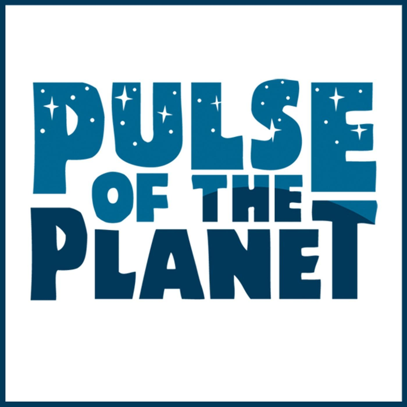 Kuarup- Remembrance and Wrestling - Pulse of the Planet ...